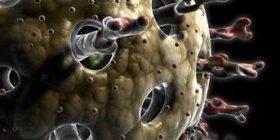 За ротавирусите-характеристика, лечение, ваксина